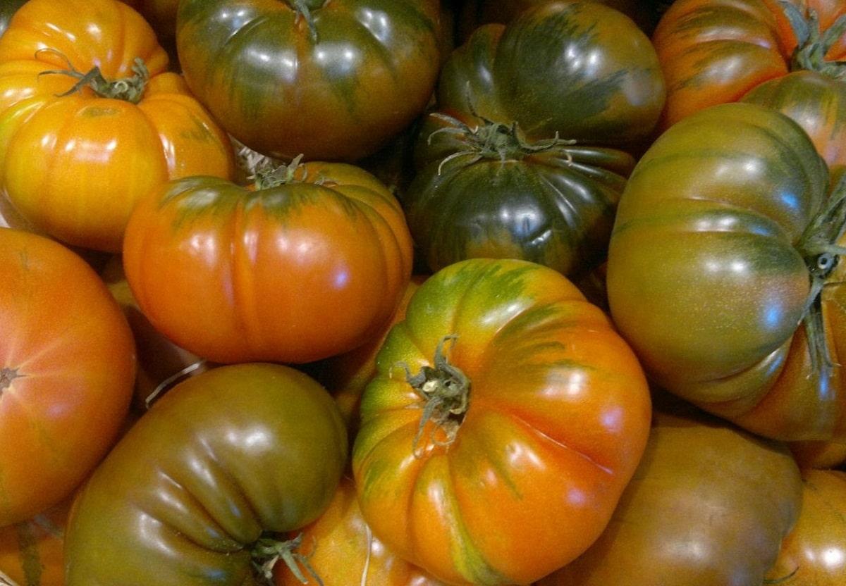 El tomate raf se usa mucho en ensaladas