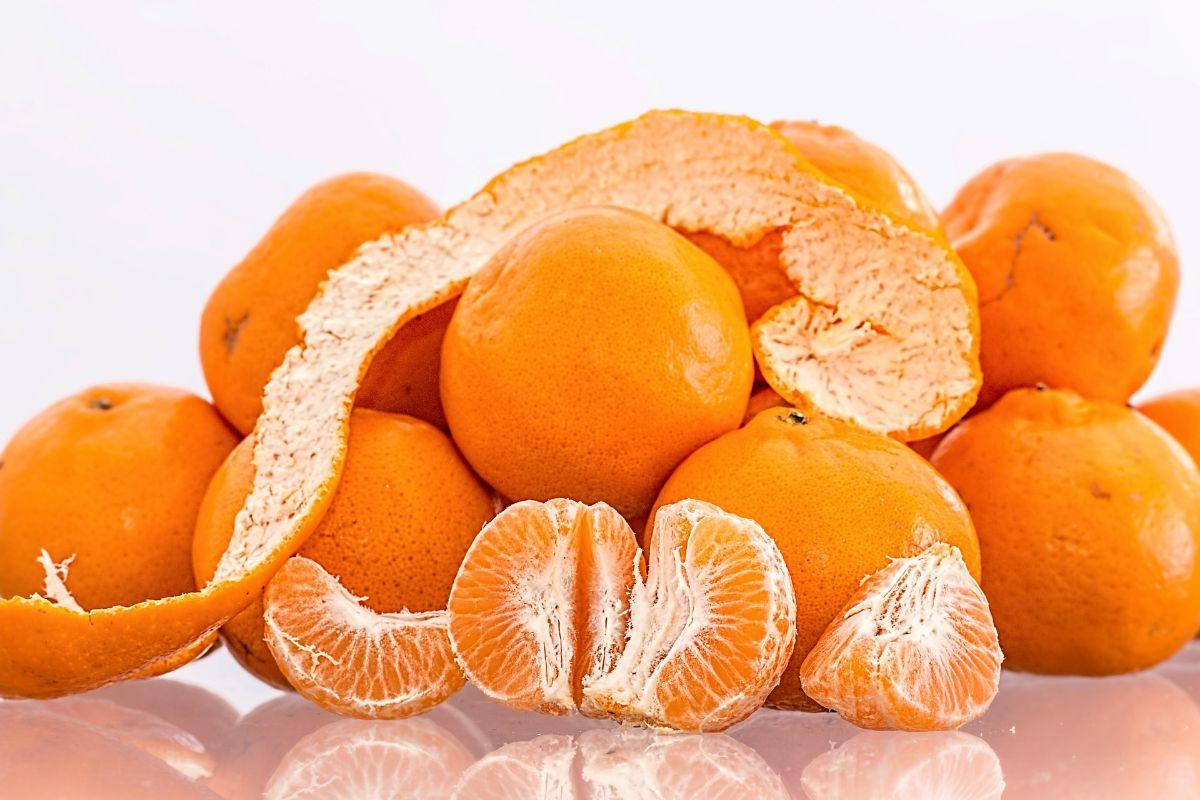 ¿Qué suelo necesita el mandarino?