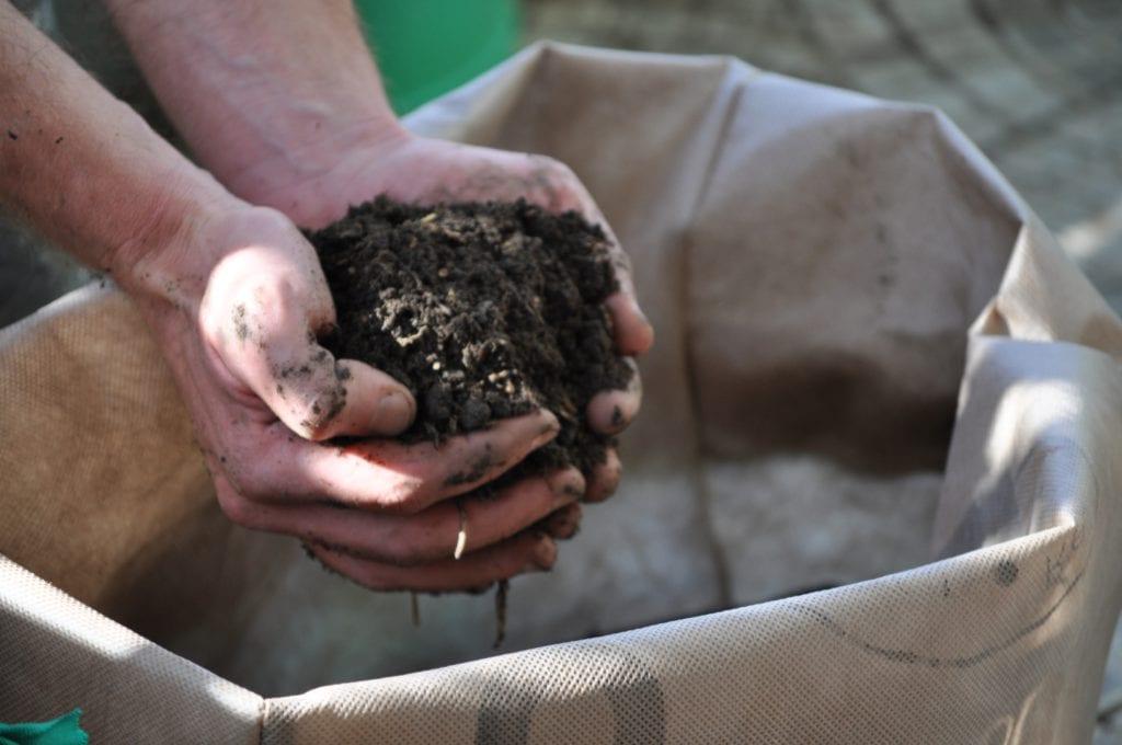 Compost, un abono excelente para el arrayán