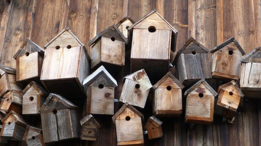 Cajas nido para pájaros