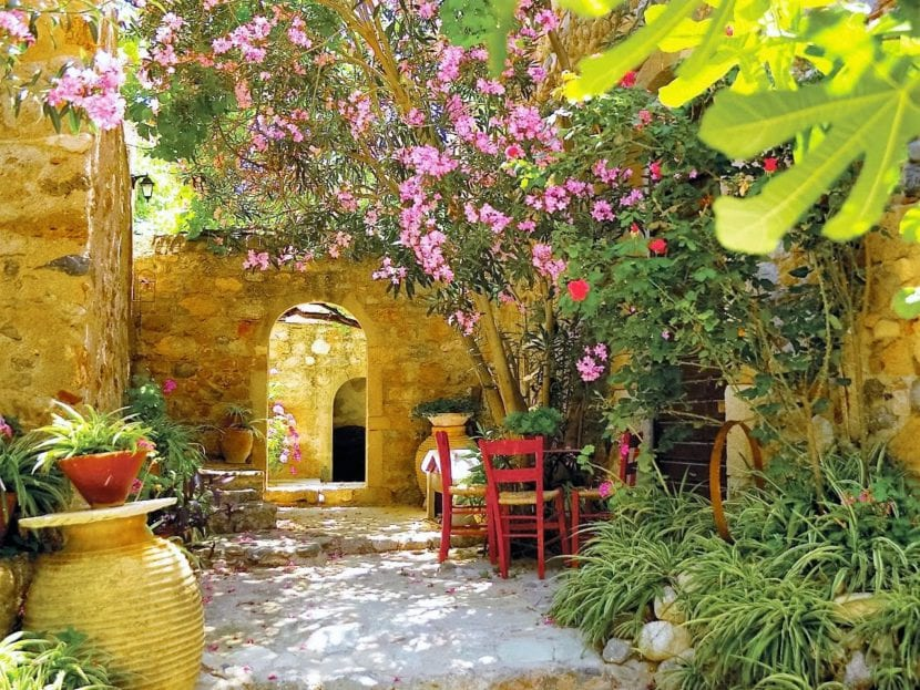 Selecci n de plantas para clima mediterr neo for Arboles ornamentales jardin
