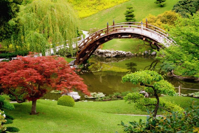 Jardín