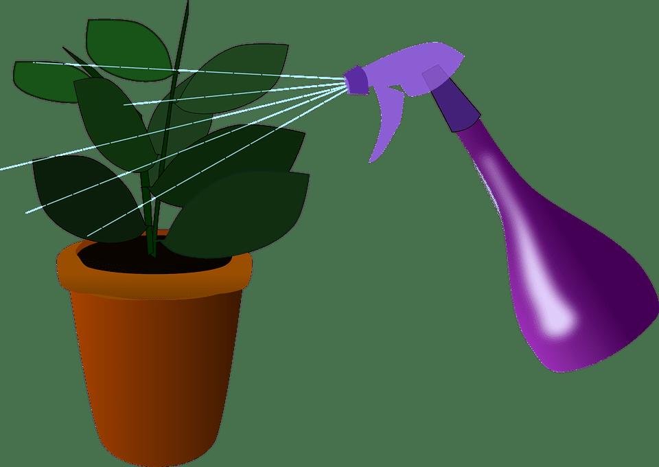 No pulverices las plantas con frecuencia
