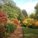Jardín otoñal