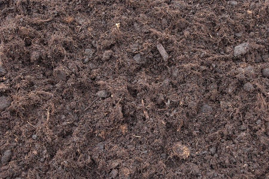 Turba negra, tierra ideal para las palmeras en maceta