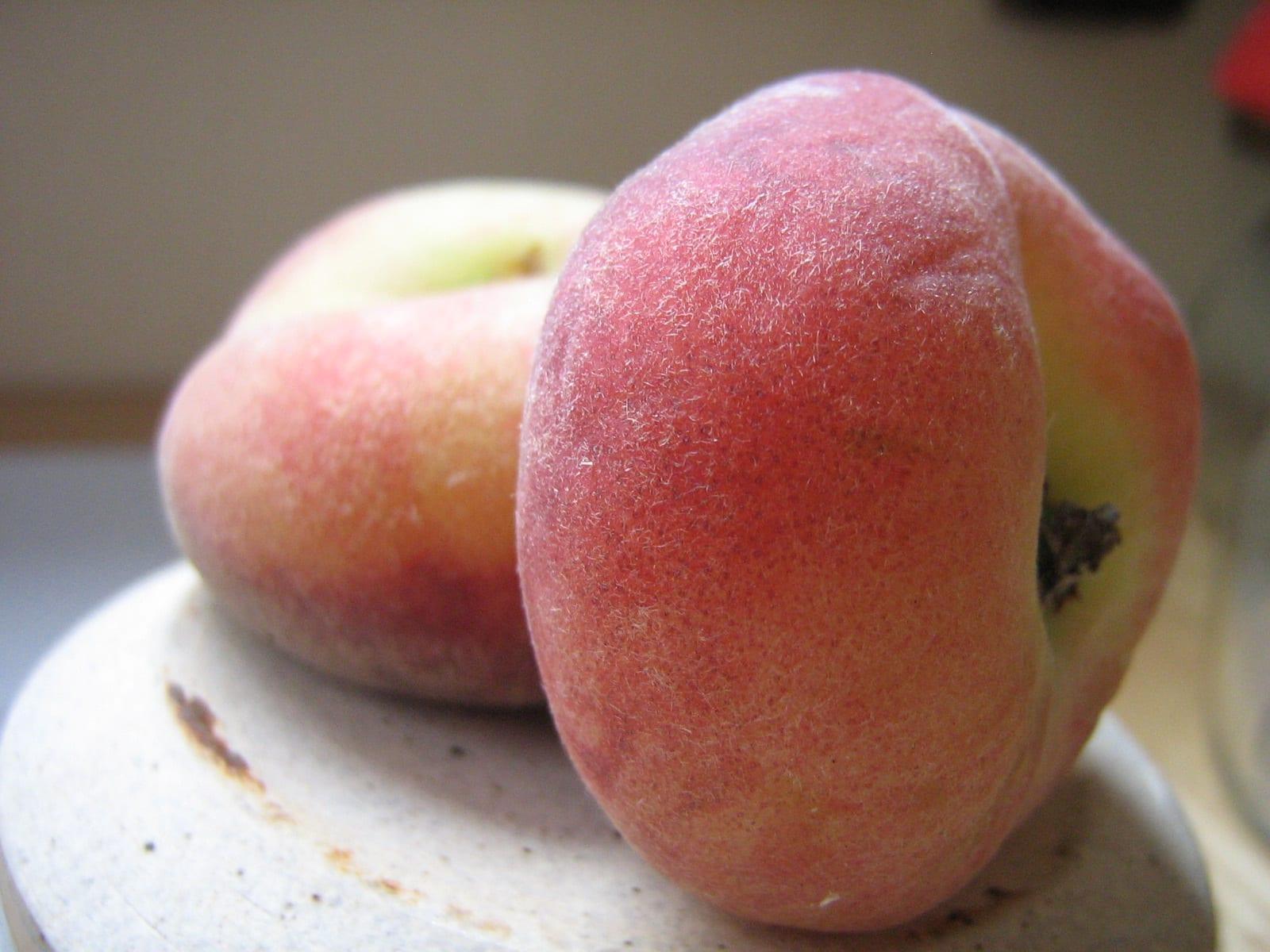 Vista del fruto del Prunus persica var. Platycarpa