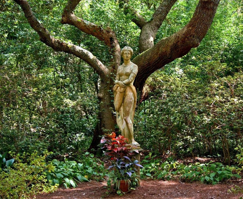 Escultura en árbol