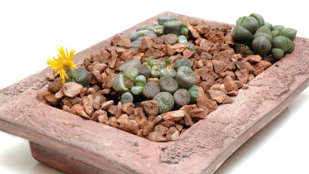 Imagen - Hogarmania.com