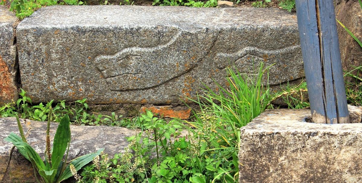Las serpientes pueden dar problemas en un jardín