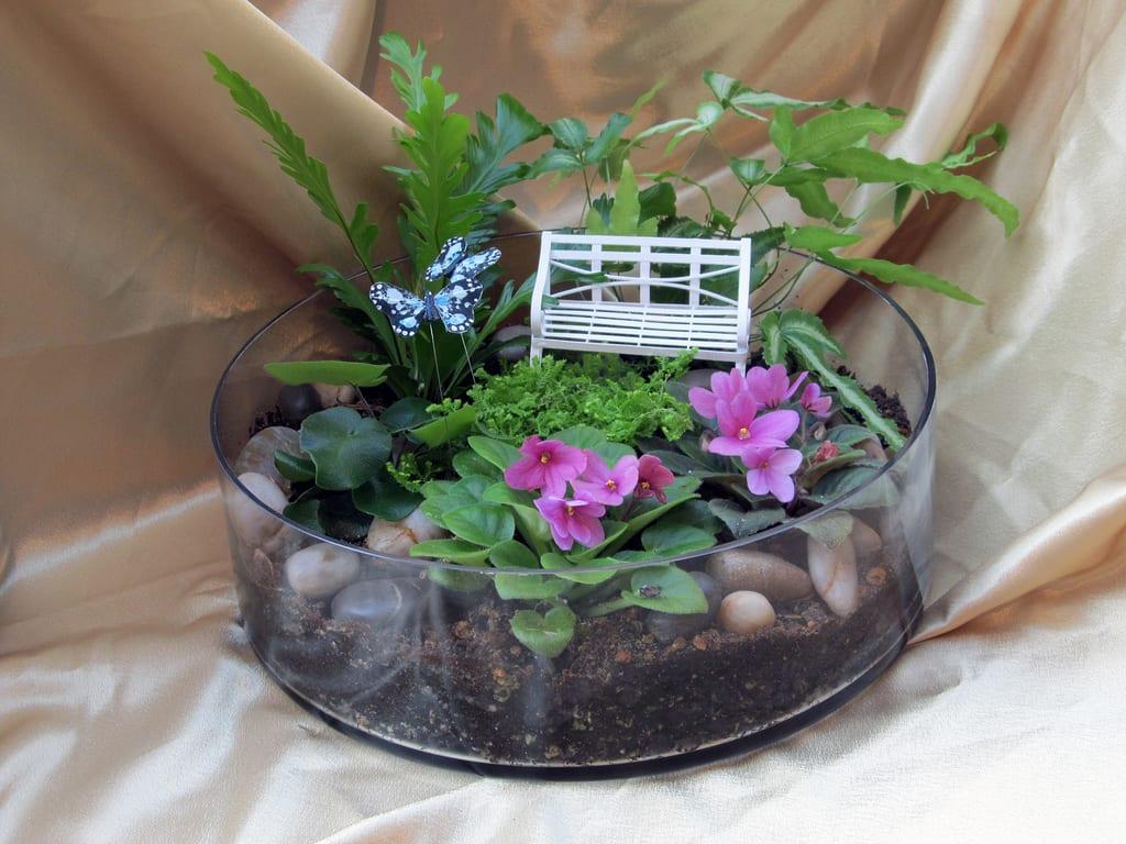 Como Decorar Un Terrario Con Plantas - Terrario-para-plantas