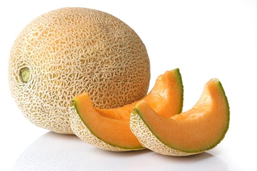melon y cucurbitaceas