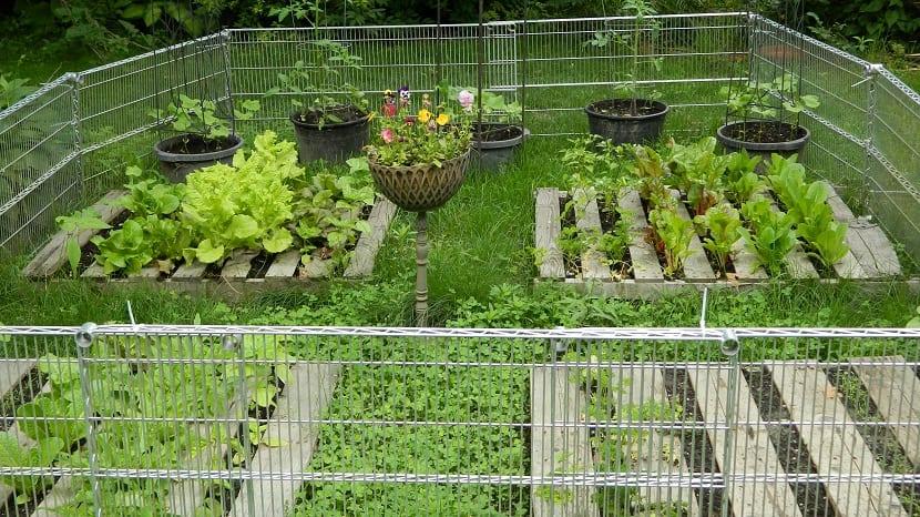 se ecologico y cuida el medio ambiente