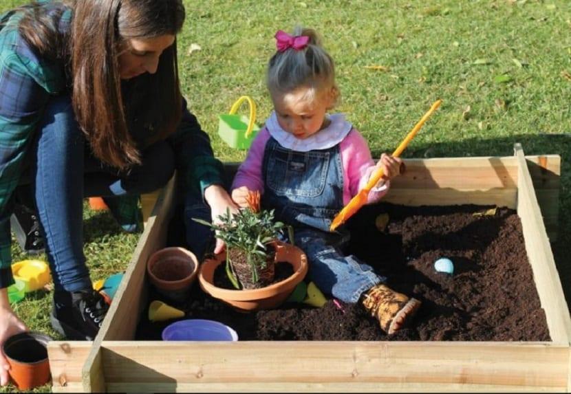 crea un mini jardin