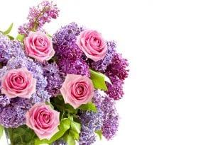diferentes ramos de flores