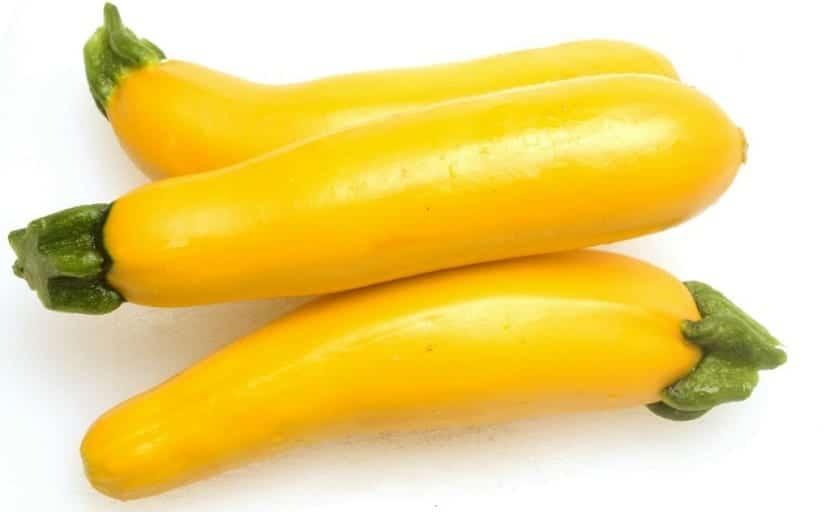 como sembrar los calabacines amarillos