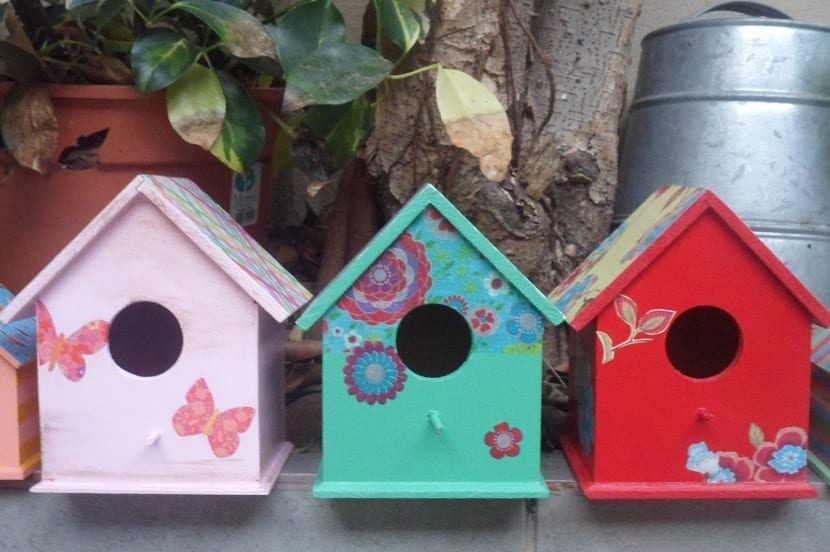 colorido en las casas de pajaros