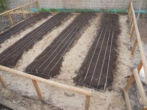 Cintas de semillas caseras para el huerto