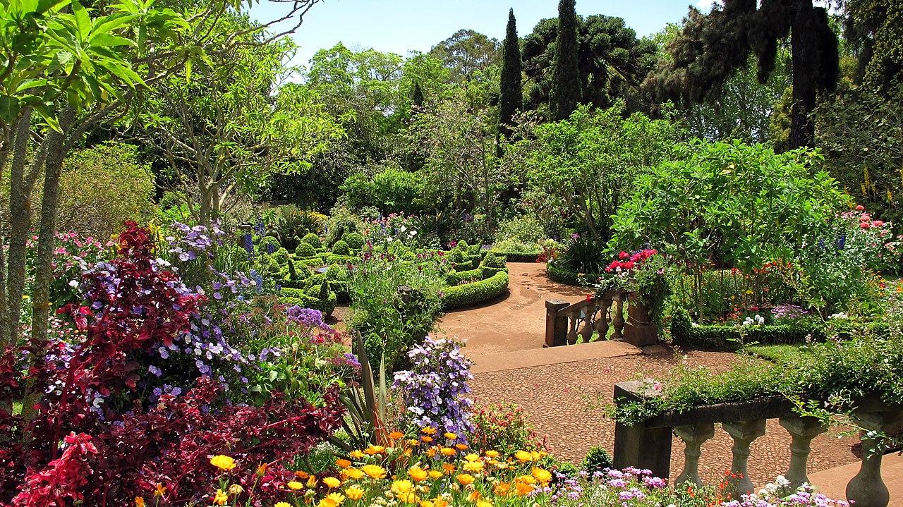 Un jardín está lleno de plantas vasculares