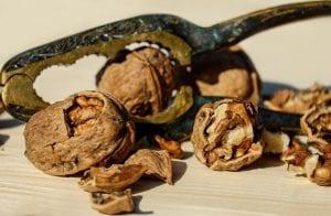 Nueces del árbol Juglans regia