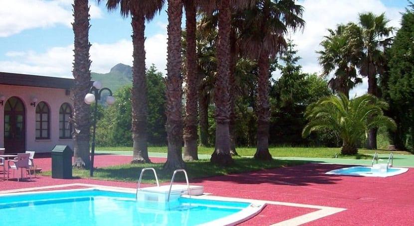 Cual es la distancia ideal entre una palmera y una piscina for Cuidado de piscinas