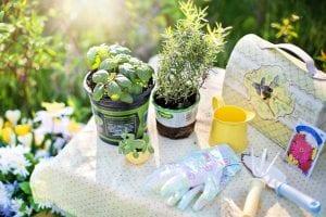 Herramientas para trabajar en el jardín