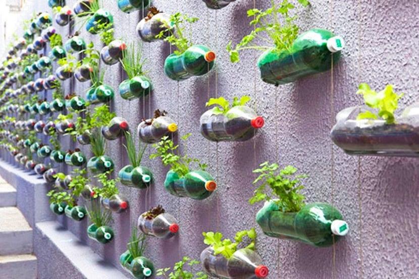 aprobechar las botellas en el jardin