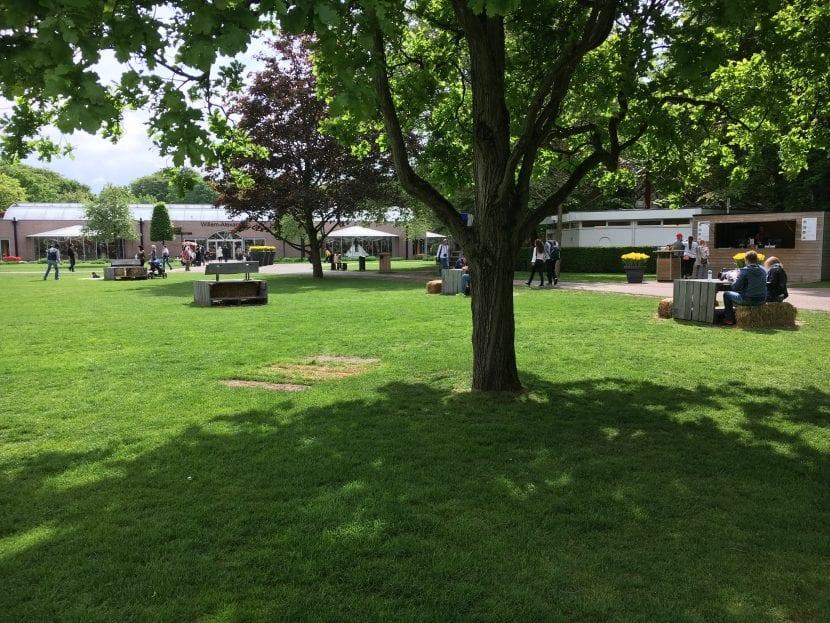 Árbol de sombra en el jardín Keunkheof