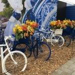 Plantas bulbosas en bicicletas