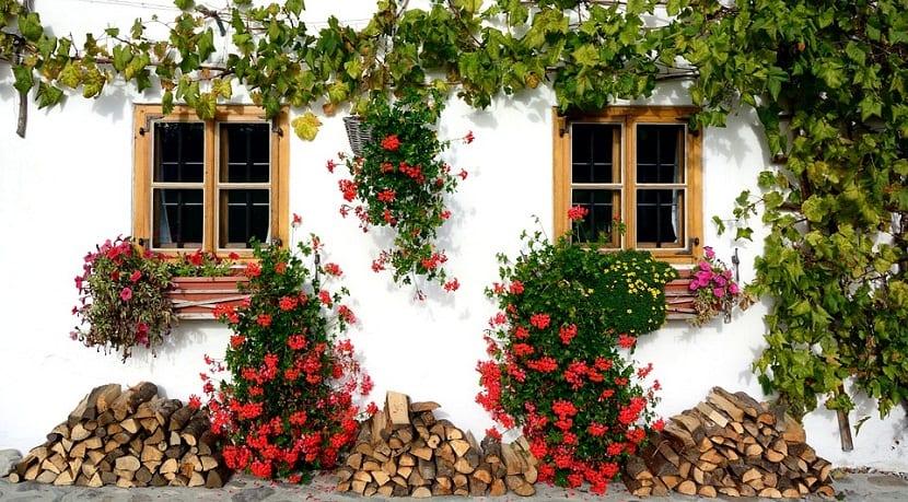 casa decorada con flores