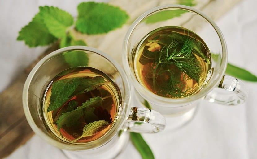 las plantas medicinales se pueden tomar en infusión