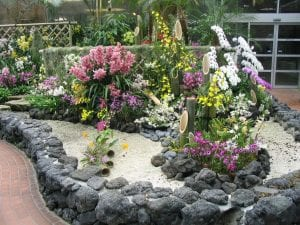 Plantas en un rincón con gravilla
