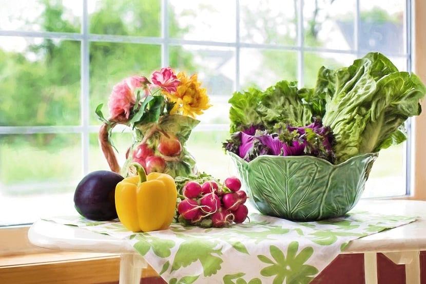 tipos diferentes de hortalizas