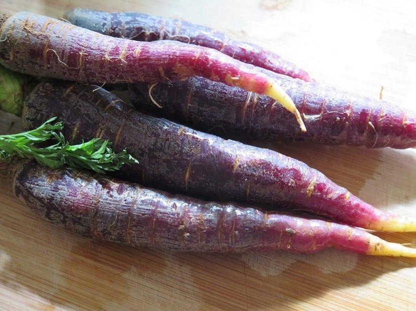 cultivo zanahorias de color morado
