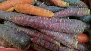zanahorias de color morado