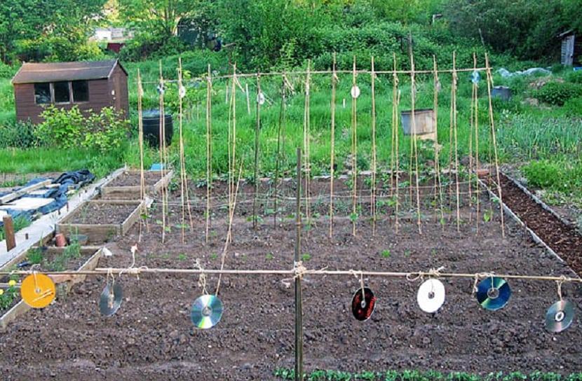 inventos caseros en la agricultura