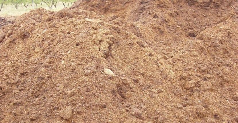 el estiércol de gallina sirve como fertilizante
