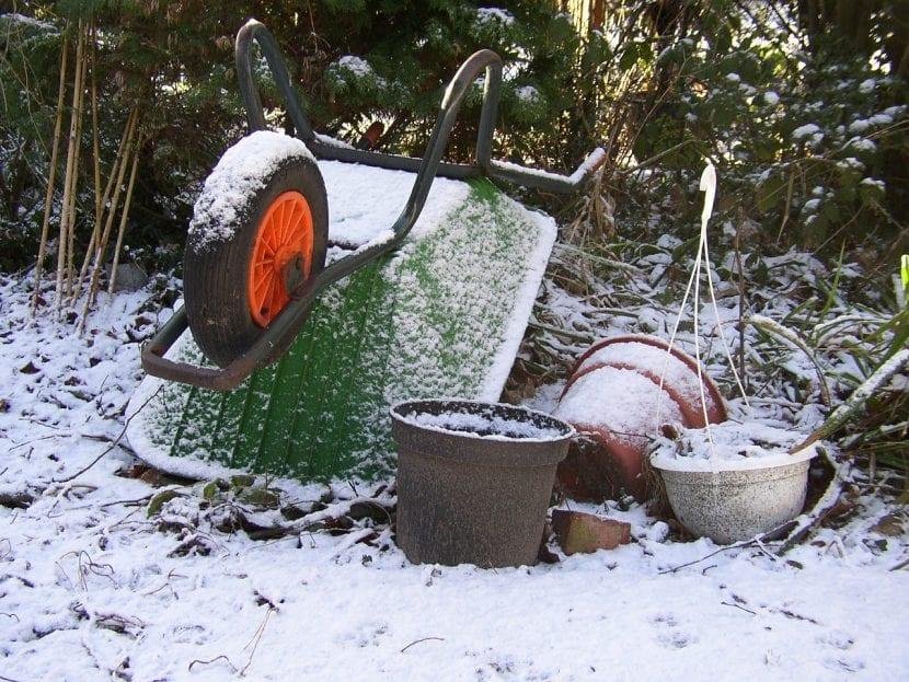 Invierno en el jardín