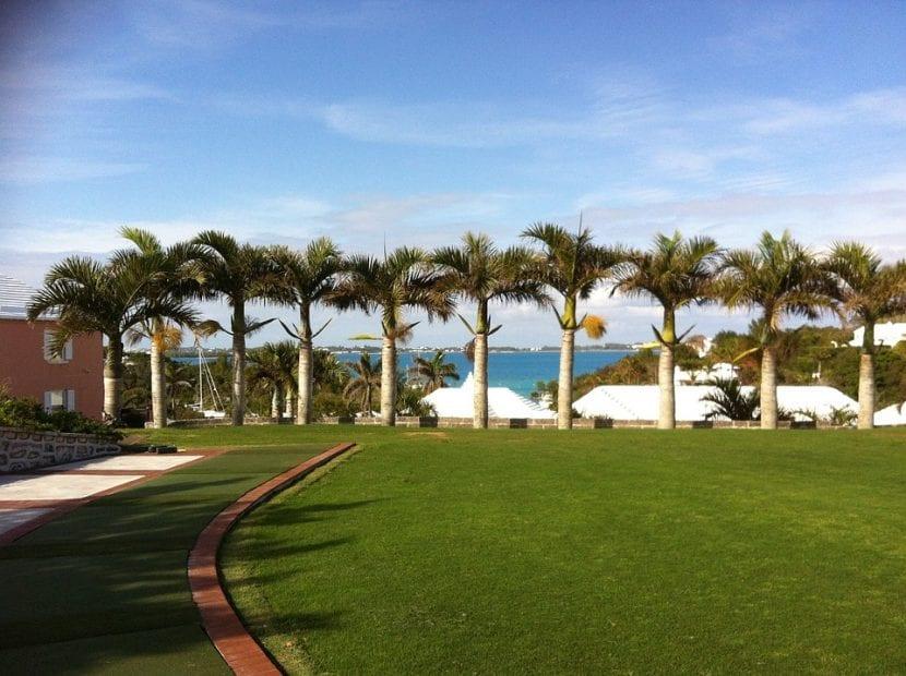 Jardín con césped de grama