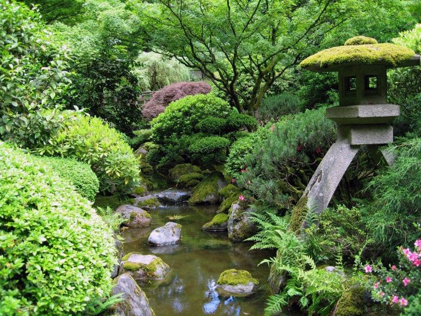 Jardín japonés con estanque