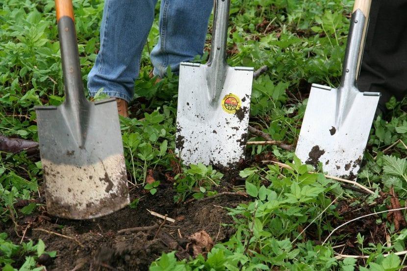 Jardineros con palas