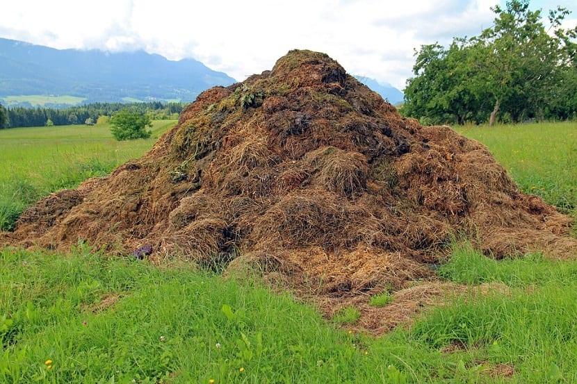 montaña para conservar el estiercol de oveja