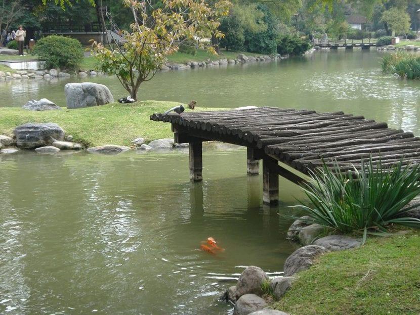 Estanque del Jardín Japonés de Buenos aires