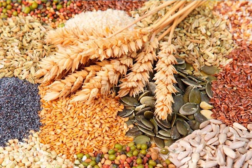 existen millones de tipos de semillas