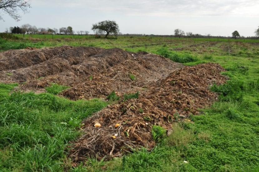 Abono orgánico sobre el suelo
