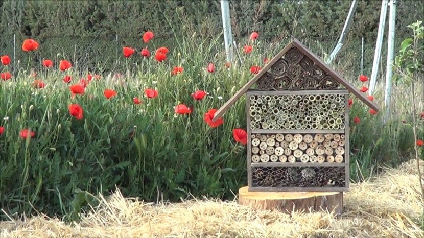 construir un hotel de insectos