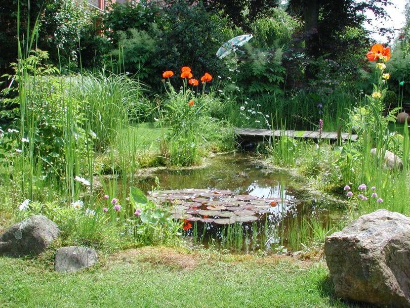 Consejos de jardinería ecológica