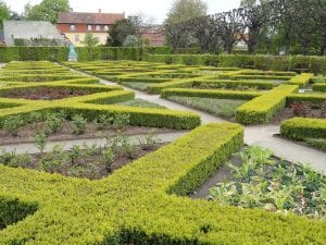 Parterre en un jardín