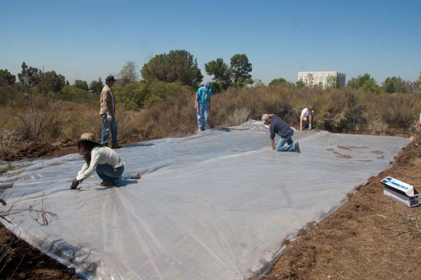 Solarización del suelo