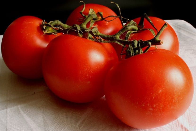 Cinco tomates maduros