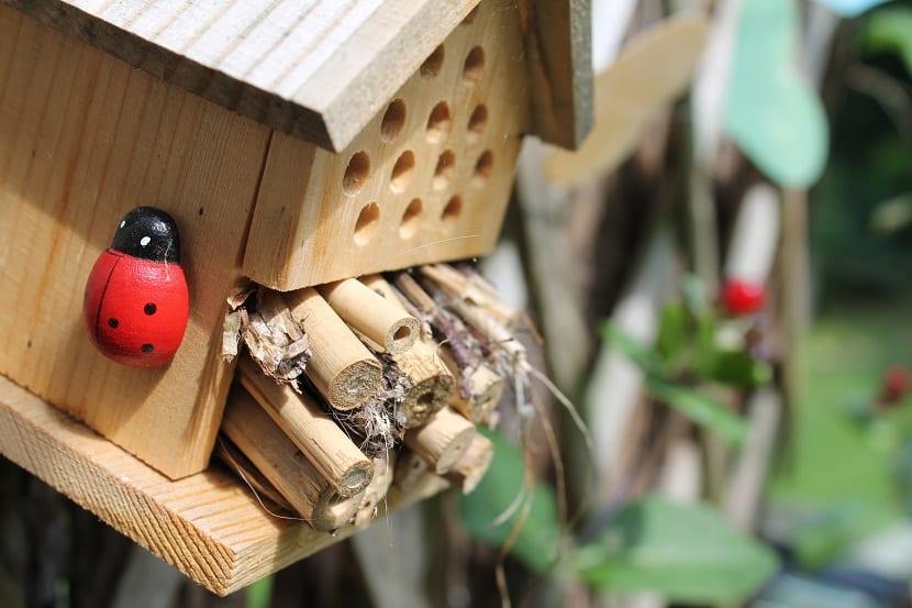 vivienda insectos para el jardin